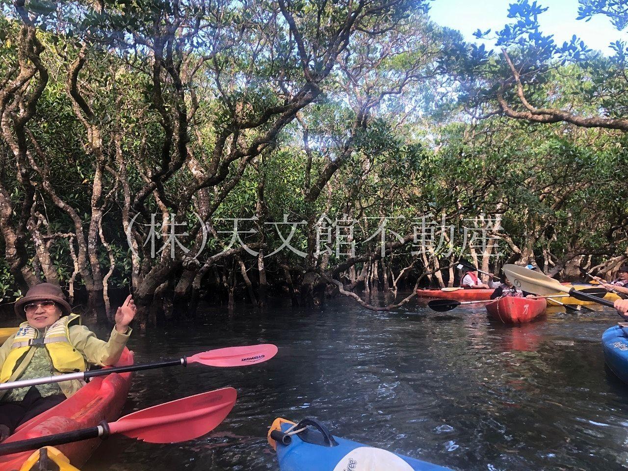 奄美市住用町石原カヌー体験マングローブパーク3
