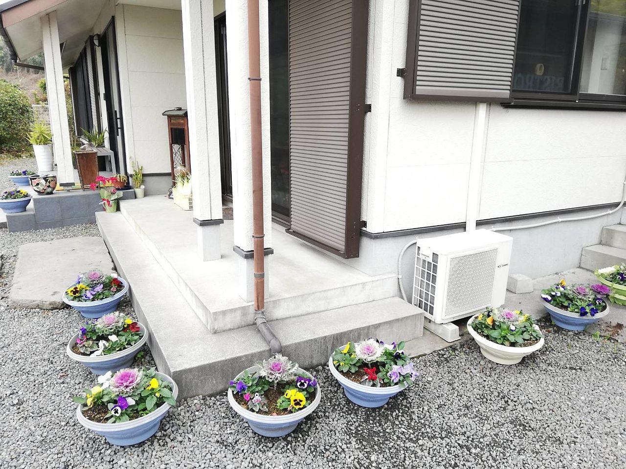 霧島市隼人町小浜「KITCHEN Q」キッチンキューにはお花が置いてあり綺麗です。