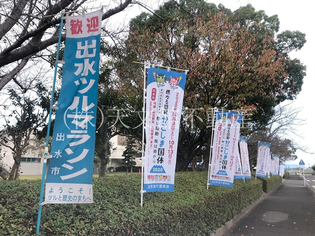 鹿児島県出水市の「出水ツルマラソン大会」に参加しました。