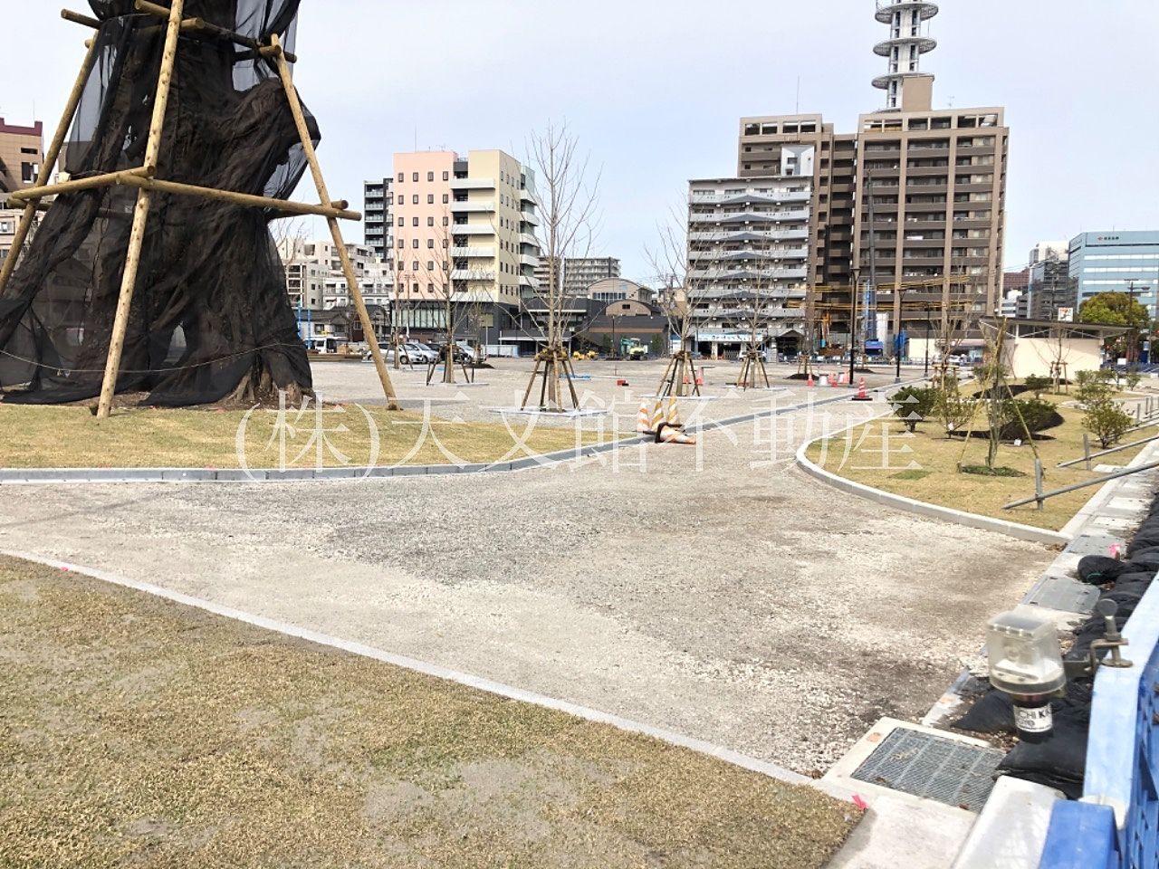 鹿児島市加治屋町の加治屋町の杜公園の東側には大きな木が植えられていました。