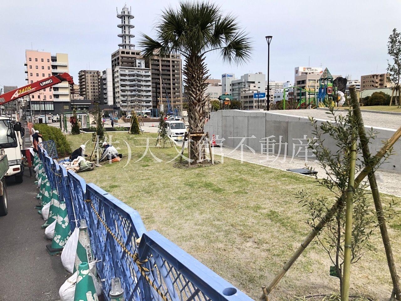 鹿児島市加治屋町の加治屋まちの杜公園の南側には芝生や木が植えられていました。