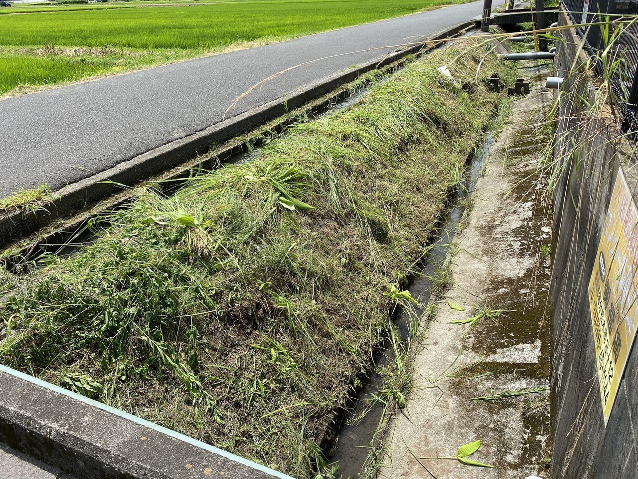 今日は霧島市国分野口に草刈りに行ってきました。