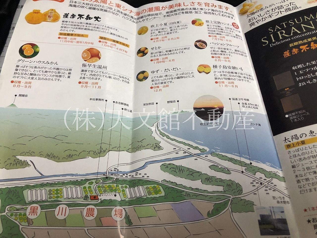 チェスト館 黒川農園 パンフレット2